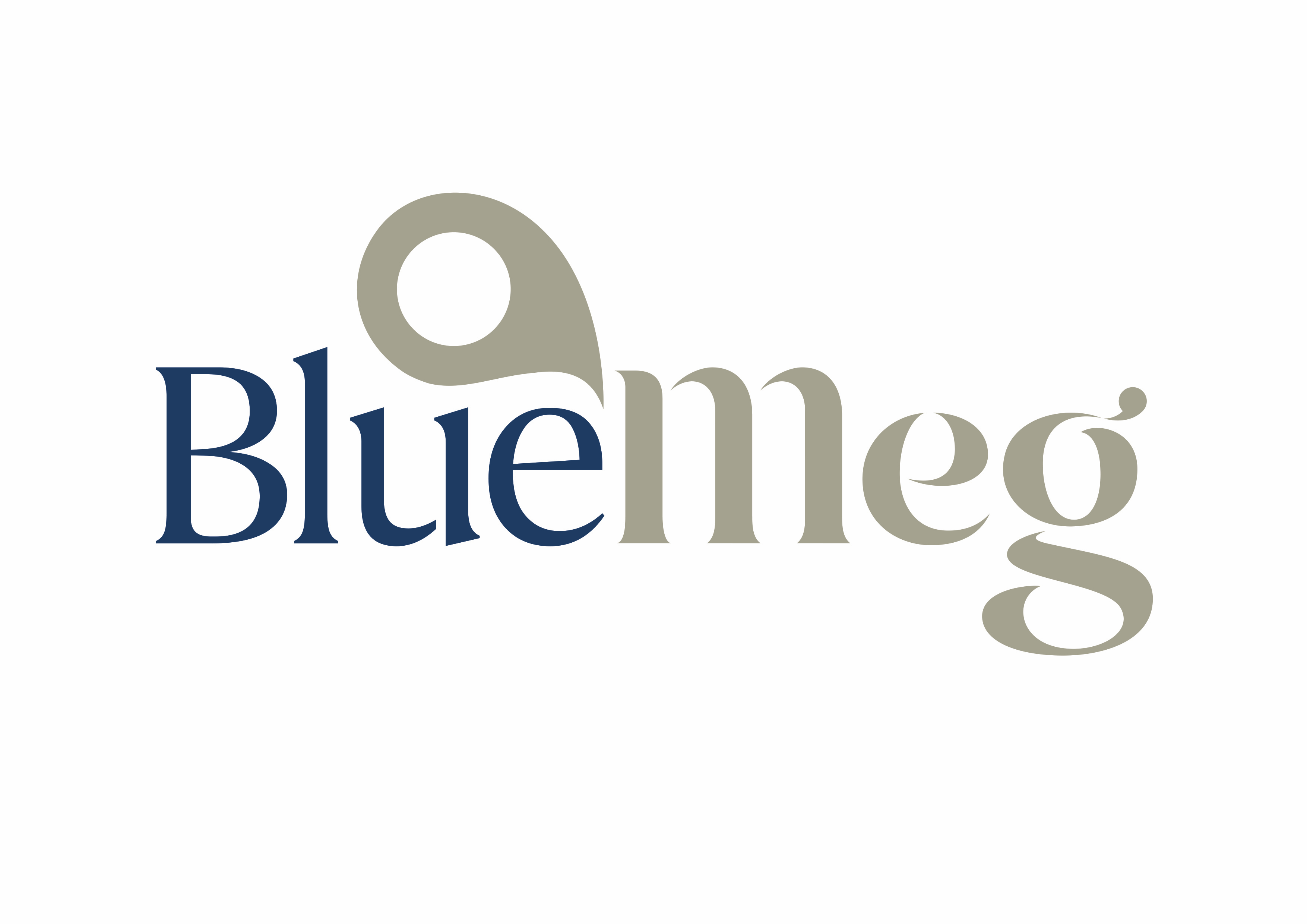 BlueMeg Logo